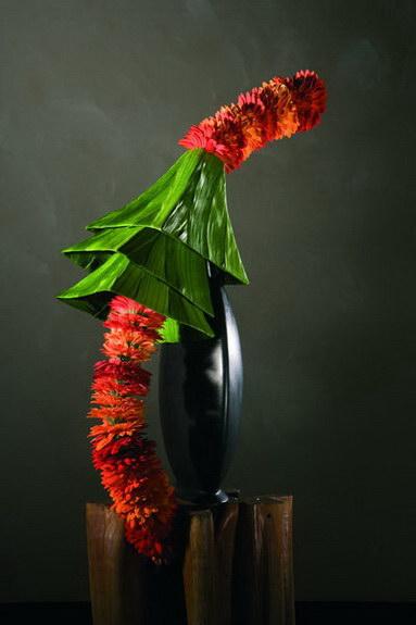 art floral marie fran oise d prez photos. Black Bedroom Furniture Sets. Home Design Ideas